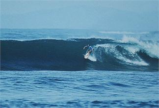 SURF CAMP ESPECIAL ROXY SOLO CHICAS