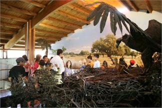 Campamento Multiaventura en La Vera (Cáceres)