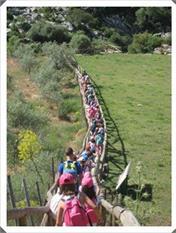 Viaje al Parque Natural Los Alcornocales-5
