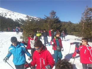 Salidas a la nieve en la Sierra de Madrid