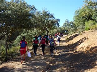 Viajes Fin de Curso Andalucía-5