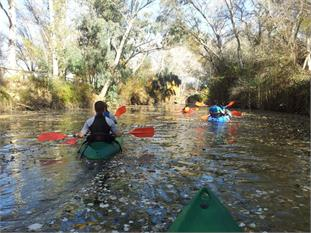 Naturaleza y multiaventura a 25 km de Sevilla-2