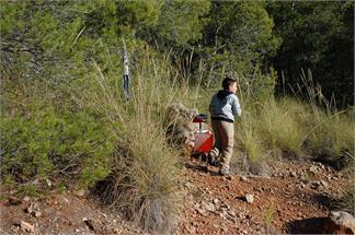 Orientación en la naturaleza en Sierra Espuña