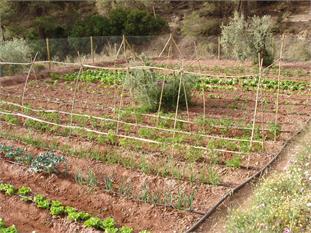 Excrusión a granja escuela en Sierra Espuña-1